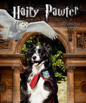 Hairy Pawter being accepted at Dogwarts