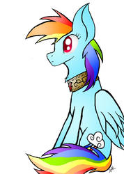 Rainbow Dash, the Element of Loyalty