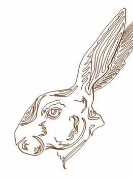 outlaw bunny