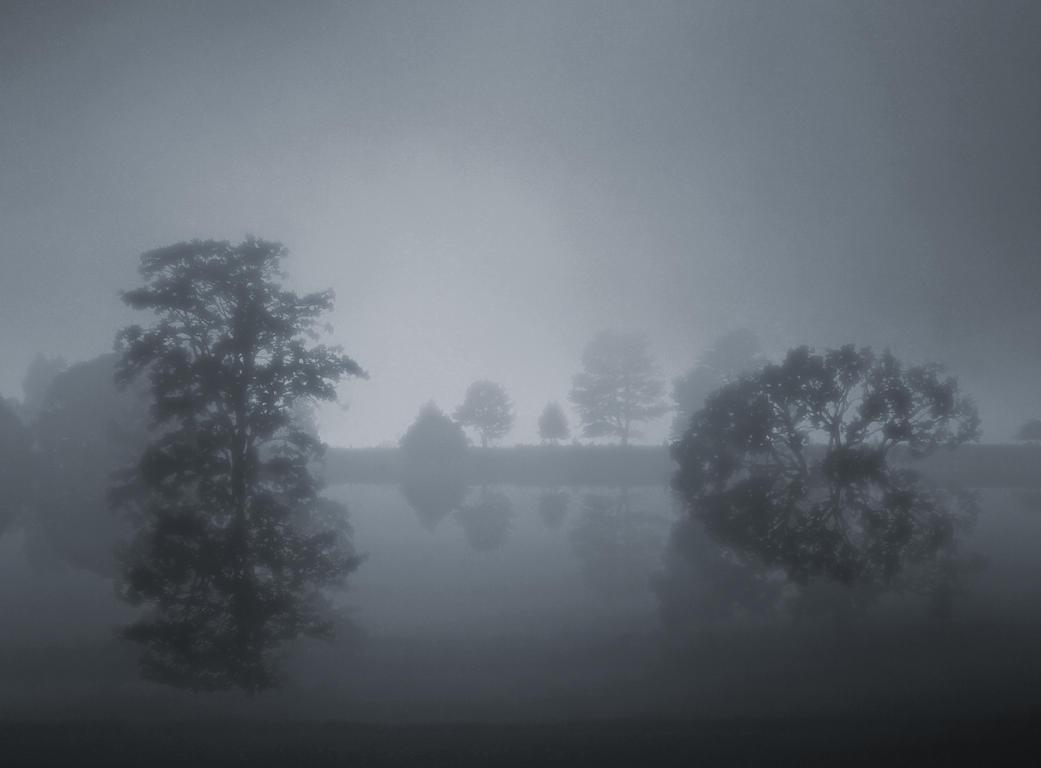 Fog Lake III by BBs-Brushes