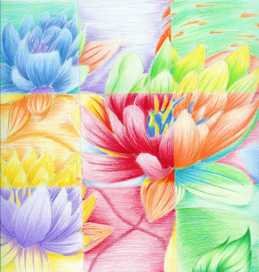 Lotus Flower Colour By Vamp666akuma On Deviantart
