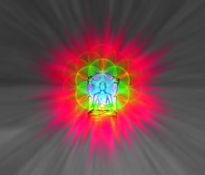 The Buddha's Flower