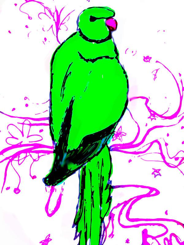 parrot 2 by praz2050 on DeviantArt