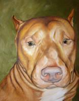 Pitbull Commission by VaraAnn