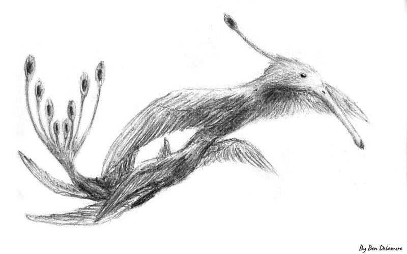 #38: Flutterbird doodle by Ben-Delamore