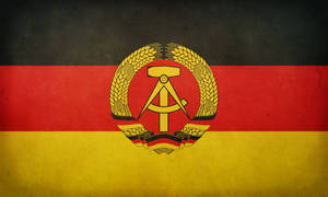 East German Grunge Flag