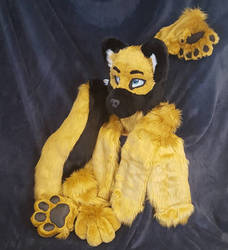 Fursuit Commission!