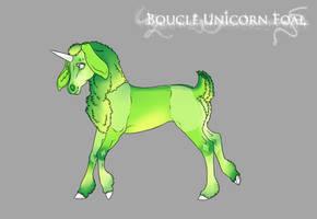 G266 Boucle Foal Design by DarKestcreagirl