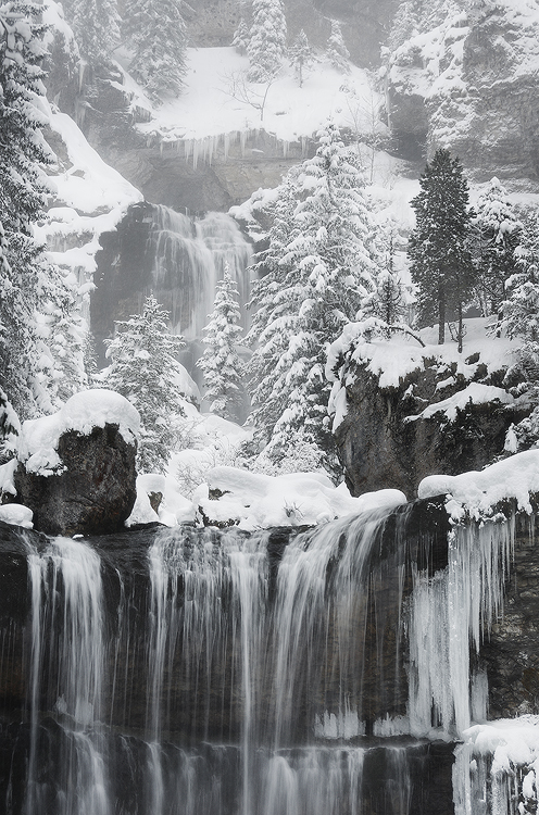 Realm of Winter