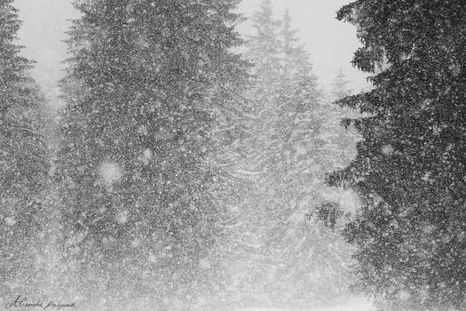 Abstract SnowStorm