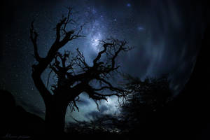 Celestial Maelstrom