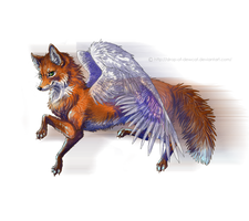 Flying fox by Ali-zarina