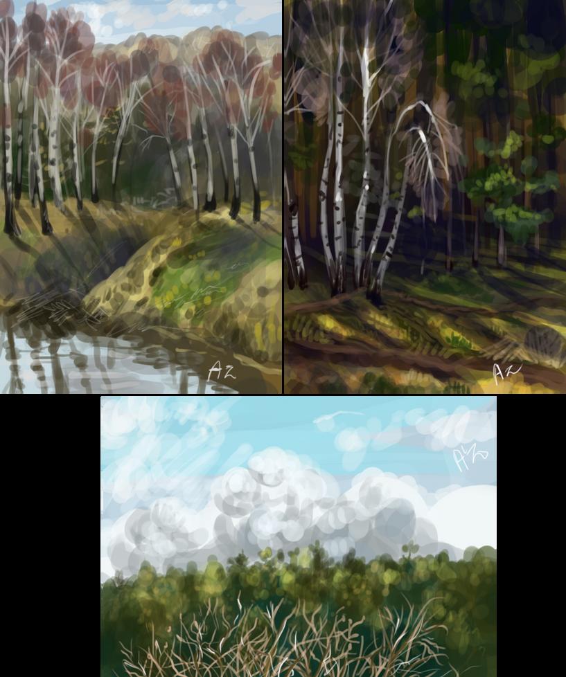 river-forest-sky by Ali-zarina
