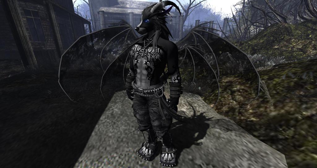 anime shadow wolf demon related keywords anime shadow