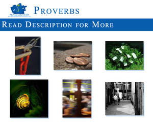 Proverbs Theme by PhotographersClub