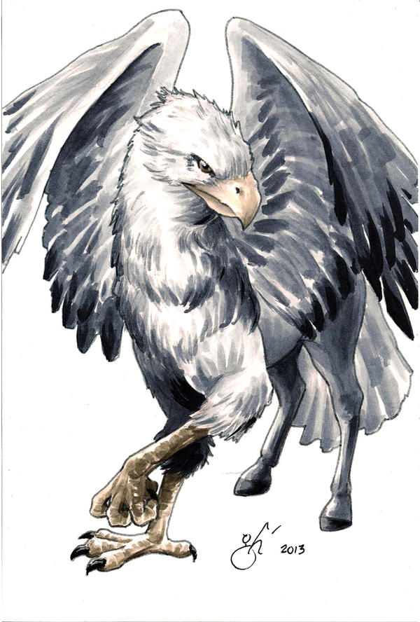 Eagle Vs Dragon Drawing Hippogriff | Rise of t...