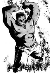 Gray Hulk - DSC by gph-artist