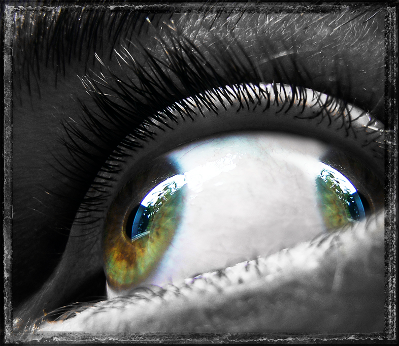 Mutated Vision by BlakkReign