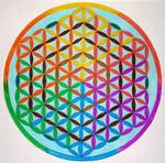 Spectrum flower of life mandala