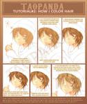 Tutorial: How i color hair