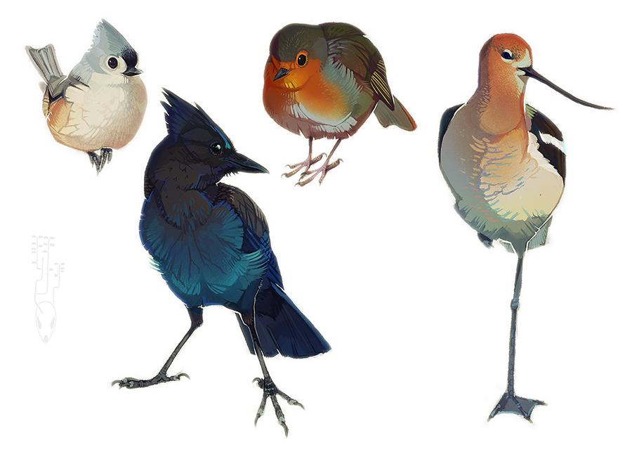 Fat Birds 3 by CoyoteMange
