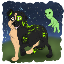(Gift) Spooked Ale
