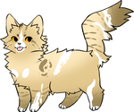 Cat Adopt OPEN 10 points