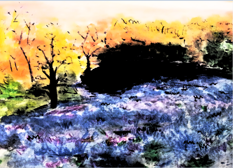 Purple Field by theloverofTMI