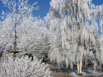 Frosted Wonderland by Book-of-Light-Stock