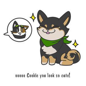 Cookie gets a bandana