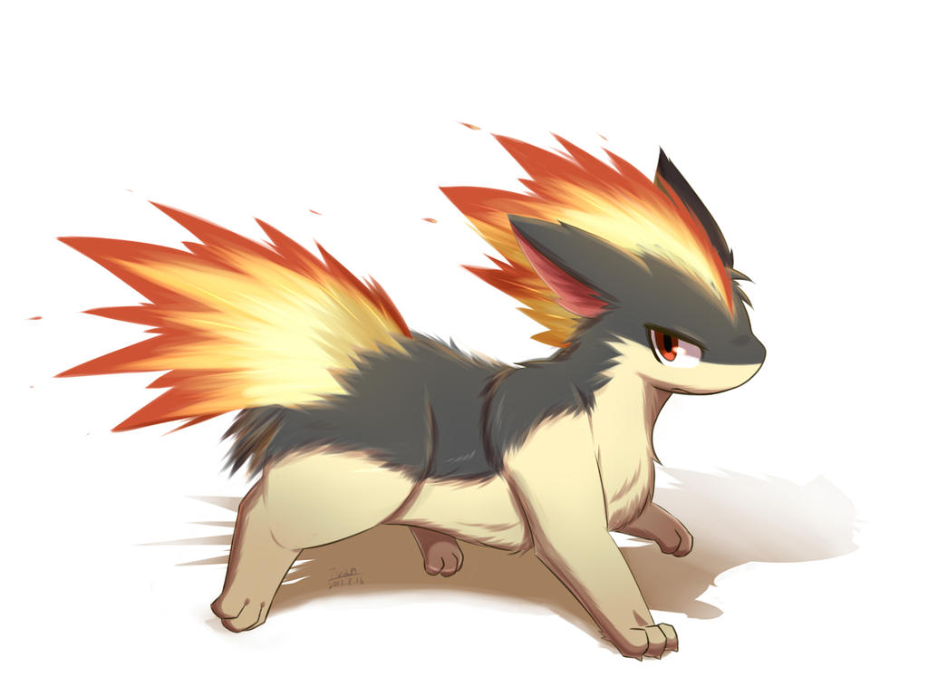 cyndaquil typhlosion quilava - photo #38