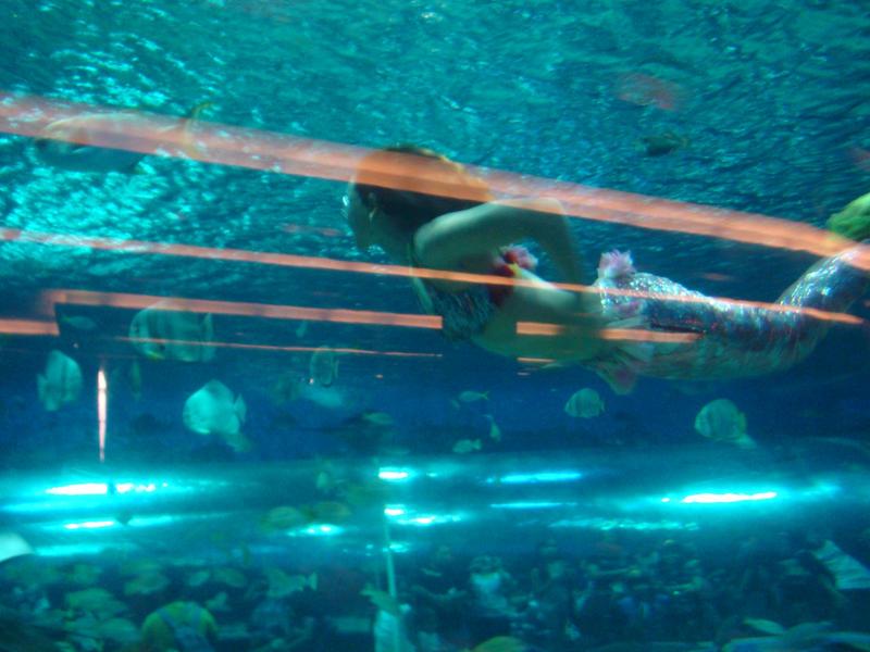 Mermaids Real Pics Real Mermaids