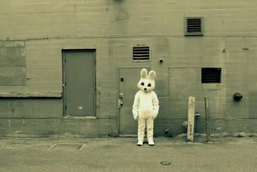 Bunny2 by T-Thomas