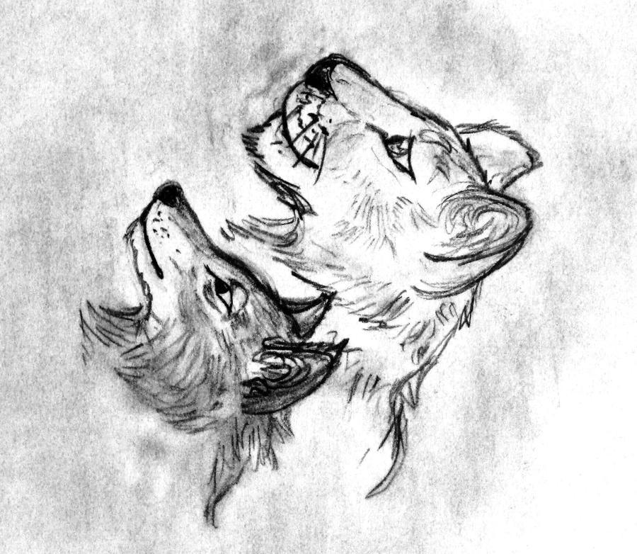 Lion Wolf Sketch By Sihisha On DeviantArt