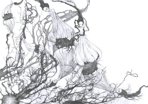 Neurotransmission Nymphs