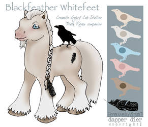 BfWf ref sheet..again by BraveAnimal