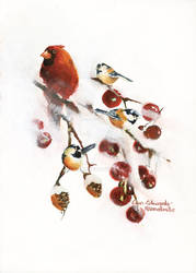 Winterland Birds