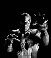 Japanese Spiderman Tribute by markhossain