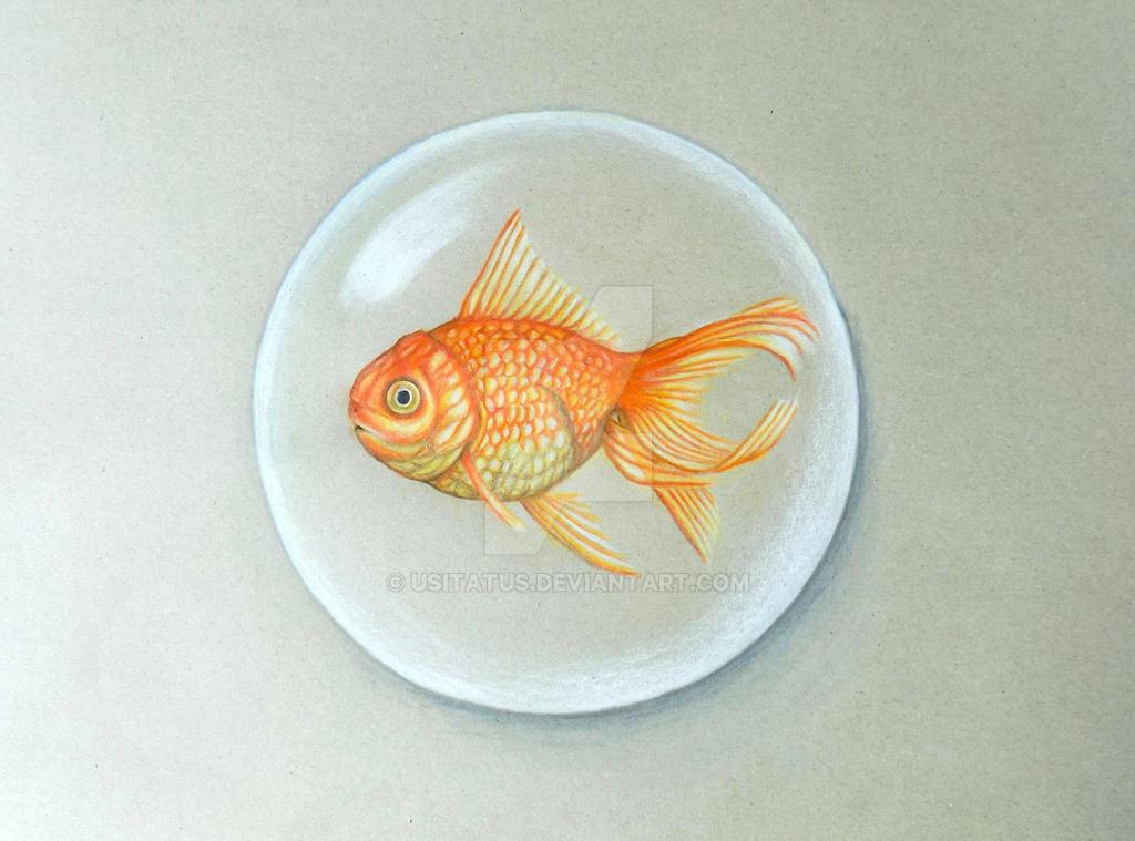 Goldfish PencilArt by Usitatus