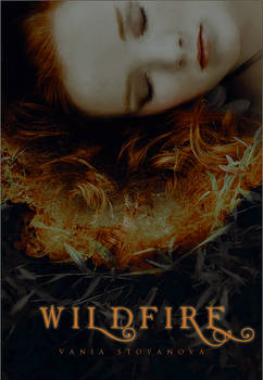 Wildfire Mock Cover