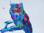 Skittles the Owl