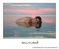 Sunset by APertsev