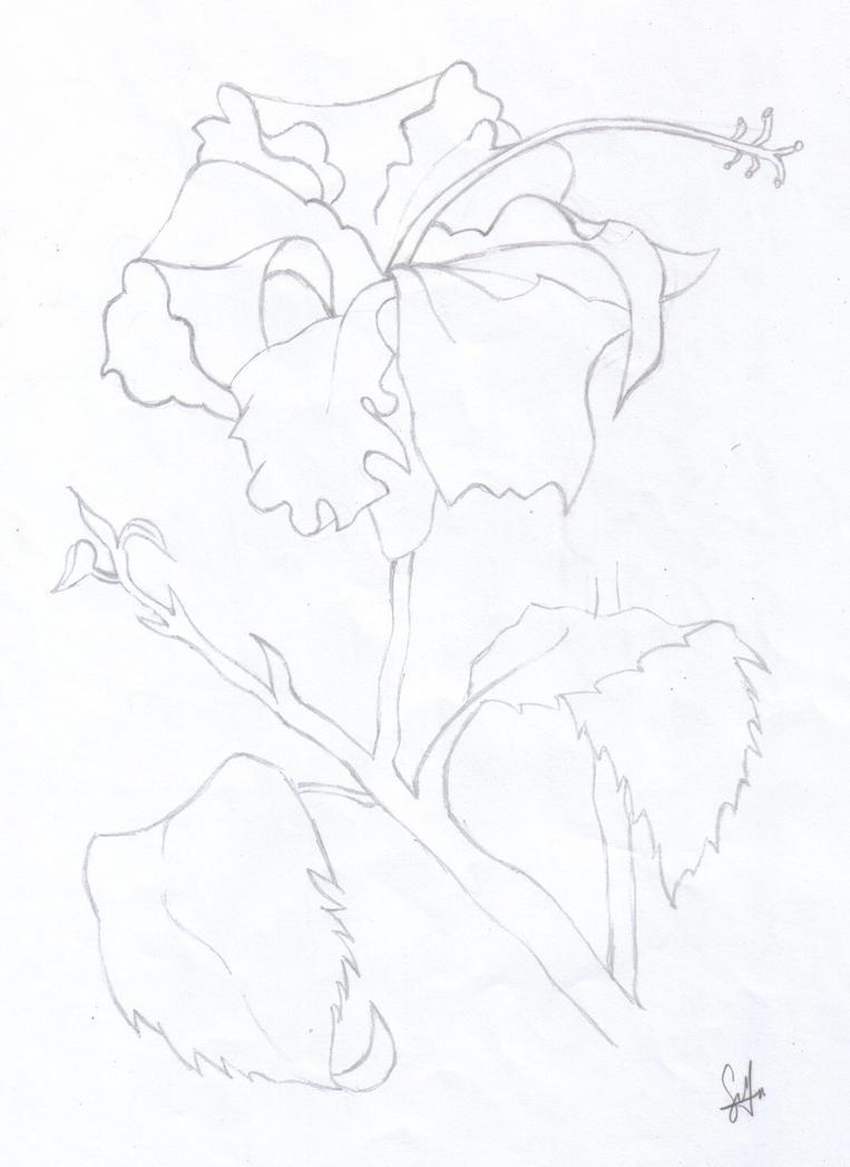 Hibiscus Outline By XXChiBiGuRlXX On DeviantArt