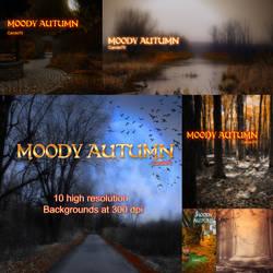 Moody Autumn by JezyCarole