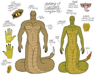 Anatomy of LG Gorgons by The-Greys