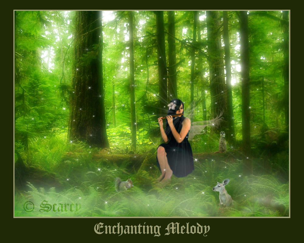 Enchanting Melody by scarcy