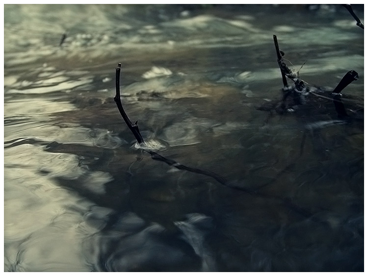 Water by Stinky9