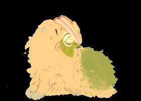[PKMN-A] .: Pancake :. [Lv.3] by adoren
