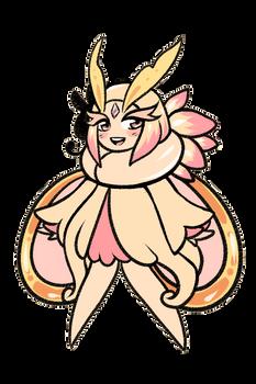 Moth boi