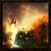Lost Angel by luana